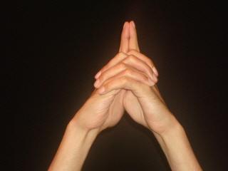 HAND POSTURE (Fig 3)